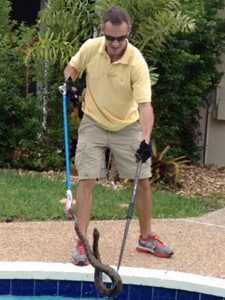 Snake Removal in Wilton Manors