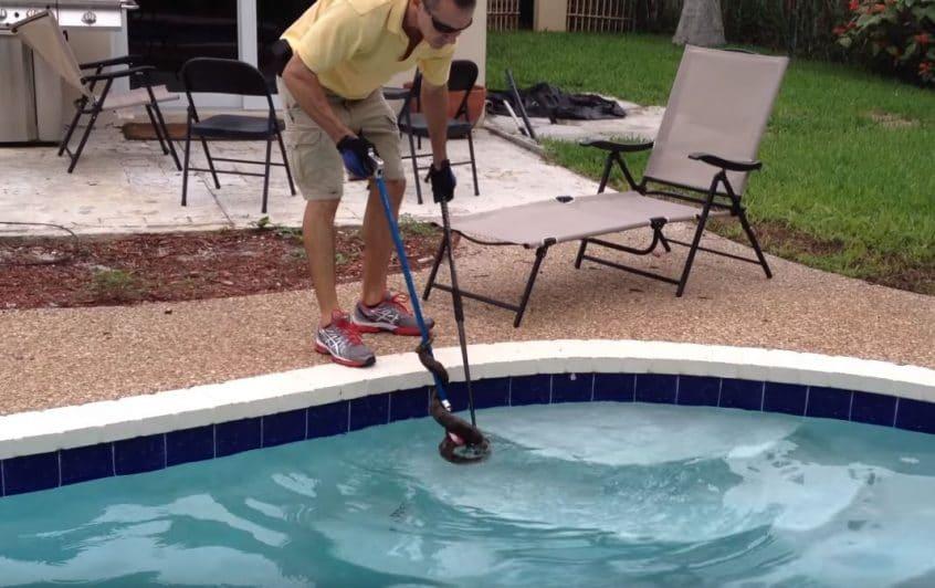snake in pool